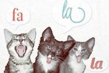 spcaLA Gear / by spca LA