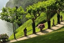 Gardens / by Alan Rosenberg