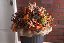 Fall Decor / Ideas for bringing the warm and fuzzy feelings of Fall into your home. / by Micha @ Cookin' Mimi