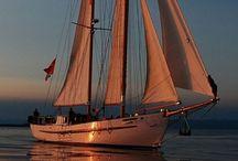 SHIP CRUISING / by Tina Perkins
