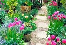 Gardens / by Janet Sawler-Meador