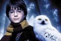 I'm a Harry Potter Fan / by Beverly Davis