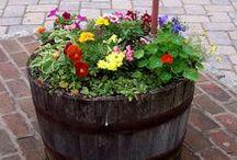 Garden Ideas / by Beverly Davis