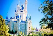 My Disney Obsession  / by Caitlin Dunn