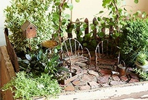 Garden-Fairy Garden / by Teresa Townsell