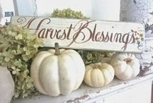 Decorating for the Fall-a-days! / Fall is such a fun time to decorate and diy! / by Nadeau Nashville