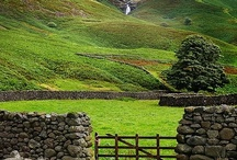 The Countryside  / by CHG