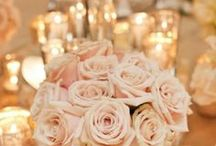 Wedding and Party Ideas / Because I would totally be a wedding planner if I could... / by Mandy Holcomb
