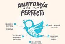 Infografías / Infografías / by Antonio Cozar