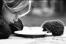Black & White / by Sheila Ridgway