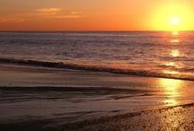 Myrtle Beach Dream Vacation / by Tamyra Vest