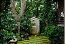 Garden / by Justyna Sitko - way2dress