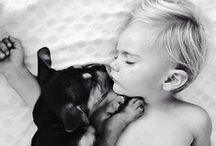 Pets / by Thiago Lima