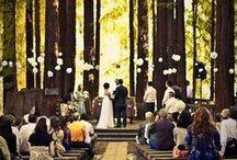 wedding in the woods / by Kiersten Rugg