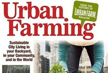 Urban Farming / by Alex Carson
