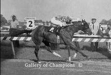 Past Preakness Winners / by Preakness Stakes