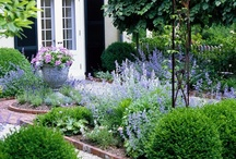 Garden and Landscape Inspiration / Ideas for my perfect (but not perfectly manicured) garden one day ... / by Wendy Urban