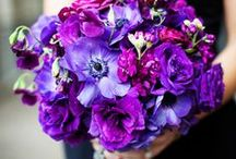 Purple Plush Bouquets / by A Flower Story