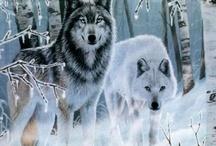 AMAZING ANIMALS / by Karen Pike