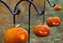 Halloween Fun / Halloween decorations, ideas and spooky fun! / by Tottums