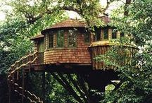 Tree House Obsession.  / by Nicole Madrid