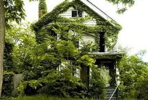 """Abandoned / Empty and abandoned buildings always """"hurt my heart"""" ... even commercial buildings, but especially homes. I always think of the memories and history.  Surely... someone could put them to good use... love them again.  What a waste. / by Kay Toups"""