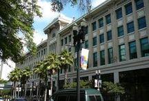Jacksonville...My Town / by Maryann Cavallaro-Turley