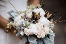 Wedding / by Lindsey