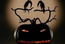 Autumn Ideas / by Carol Ahearn