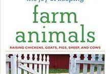 farm / by Gram Visser