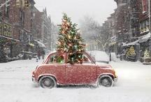 Ideas for Christmas Preparations / by Stephanie Walmsley