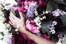 Wedding Plans / by Lisa Kunizaki