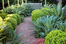 Garden Therapy / by Kristie Rae Cavanagh