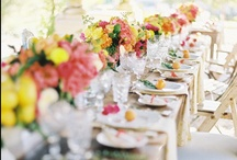 tablescapes / by Miranda Hattie