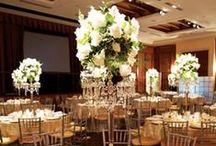 my wedding / by Megan Reiner