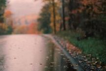 Autumn / by Gemma Sands