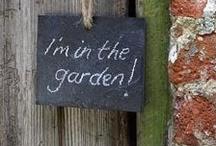 in the garden.  / gardening  / by Del