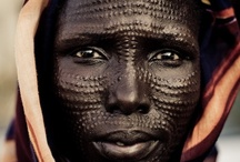 Cultures / by Kara Morgan