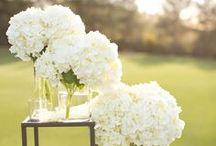 Wedding Ideas / by Stella Mark