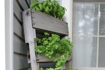 Good idear / Helpful household tips. / by Carmen C