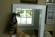 For my four legged babies / All about my pets / by Debbie Lachenmeier Cecak