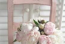 Pink is in in my book / by Denise Clark
