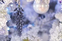 christmas / by Denise Clark