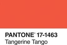 xo tangerine tango / PANTONE 2012 Color of The Year: Pantone 17-1463 Tangerine Tango http://www.pantone.com/pages/pantone/category.aspx?ca=88 / by xoj9Creative