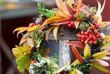 Lovely Autumn / by Deirdre Barnett