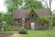 Barns / by Linda Germann