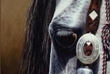 Lovin' Horses / by Carina Weiler