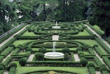garden / by Simona Demeter