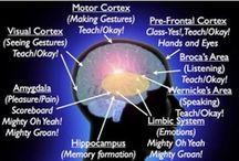 Classroom - WHOLE BRAIN TEACHING / by Lori Susott