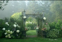 Secret Gardens / by Geri Eannotti Owen